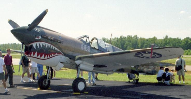 P-40 3.jpg