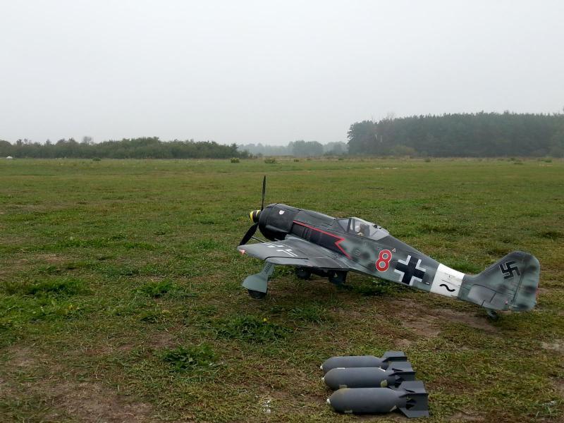 Focke-Wulf 190 FMS 5.jpg