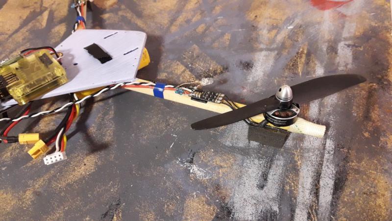bicopter3.jpg