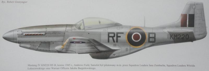 P-51D.JPG