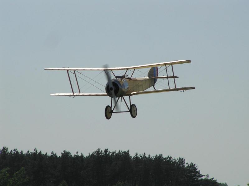 P1010026.JPG
